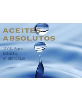 Aceites Absolutos